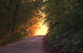 Path_to_sunlight