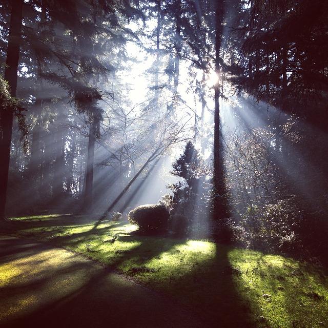 rays_sunshine