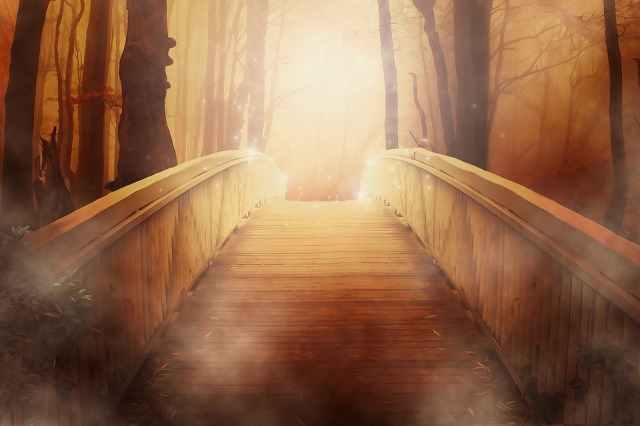 bridge_peacemaker