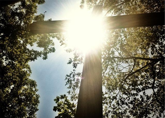 sunshine_cross