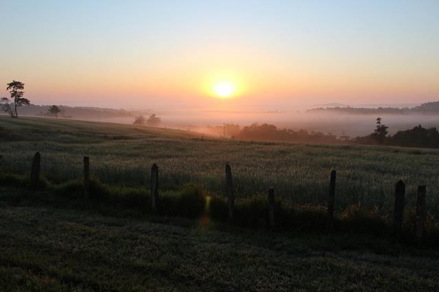 sun_rise_meadow