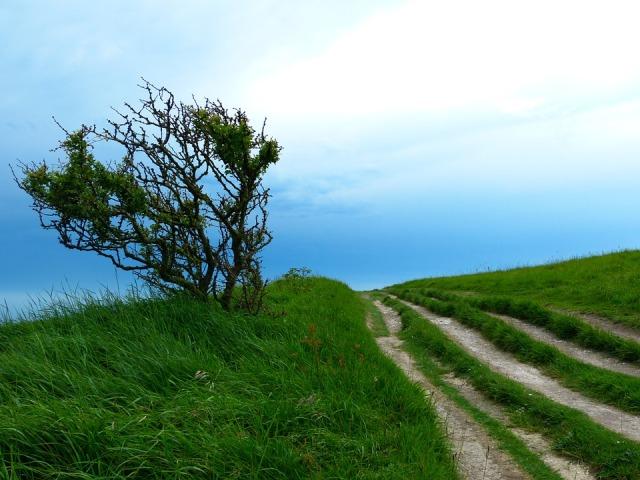 paths_hill_sky